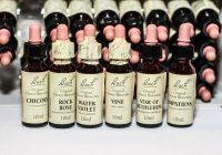 Sammlung von Bachblüten in kleinen Flaschen